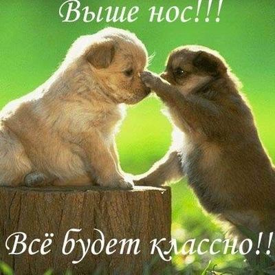 Екатерина Седова, 27 января , Казань, id10892173