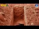 Змея в могиле реальная история Напоминание о смерти