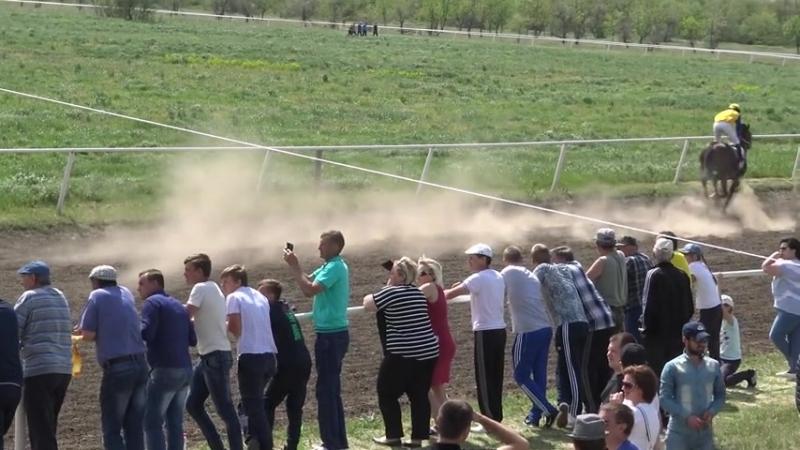Скачки 05.05.2018 Новоселицкое - заезд 6