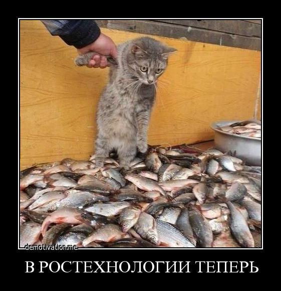 Предложила рыба в пост рецепты с фото задрожал, как будто