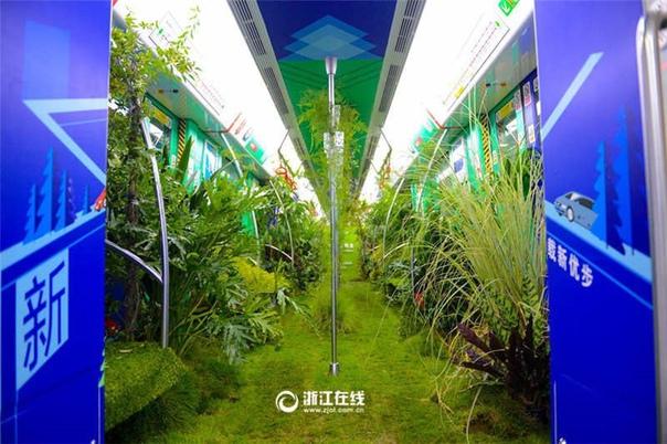 В китайском городе Ханчжоу один из вагонов метро превратили в настоящий лес. Вдоль стен были установлены горшки с деревьями и цветами, сидения покрыты мхом и листьями и даже металлические поручни обвивал плющ.