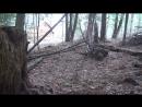 Coldsteel Boar Spear Review Test