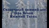 Сказочный лес горы Белой. Снежный ноктюрн. Ричард Клайдерман Snow Nocturne. Richard Clayderman