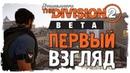 THE DIVISION 2 - ПЕРВЫЙ ВЗГЛЯД | PRIVATE BETA