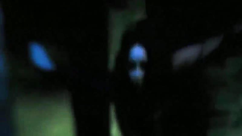 Eden 1998 Enigma Remix Fan Made Music Video
