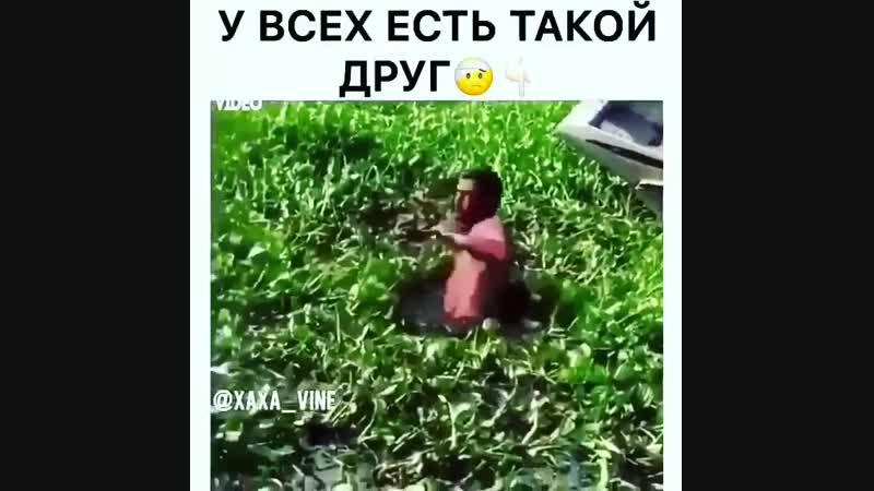 убился об лодку