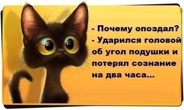 Фото №427788592 со страницы Игоря Гутика