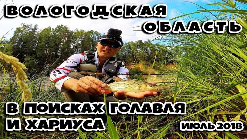 Рыбалка на родине Деда Мороза =) в Великоустюгском районе, Вологодской области