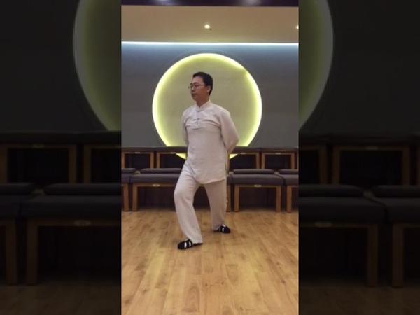 9 shi qian jin shi в исполнении Мастера Ван Лина