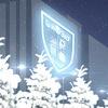 Институт финансов, экономики и управления ТГУ