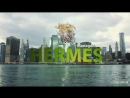 HERMES Management Ltd современные финансовые инструменты