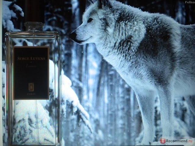 Имя ее волчица Обзор аромата Louve Serge Lutens