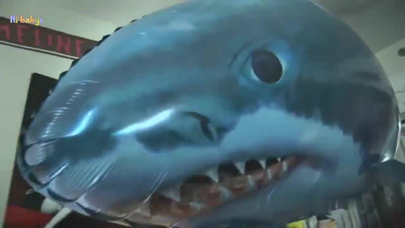 Летающая акула и рыба клоун