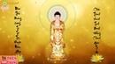Nhạc Phật Niệm Phật A Di Đà Phật Niệm Phật 4 Chữ Niệm Phật 12 Giờ A DI ĐÀ PHẬT A DI ĐÀ PHẬT A DI ĐÀ PHẬT A DI ĐÀ