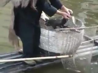Древний способ ловли рыбы жив до сих пор!