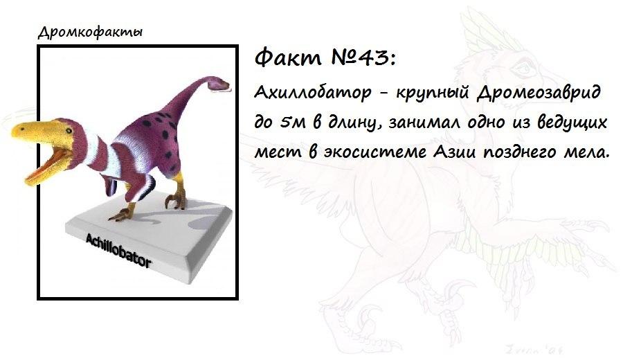 https://pp.vk.me/c620216/v620216874/1cf2b/PNbgjIqhud4.jpg