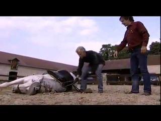 Обучение падению с лошадью на галопе