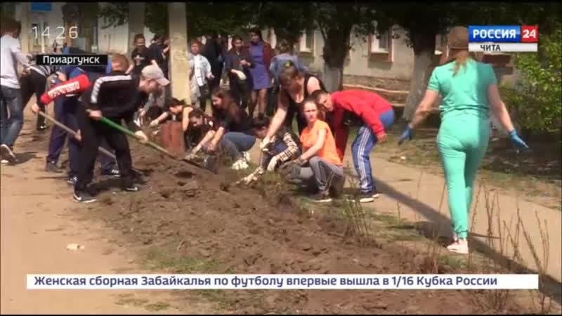 Масштабные работы по озеленению в Приаргунске
