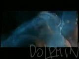 Дельфин - Dolphin - Я Буду Жить.wmv