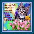 http://cs419525.vk.me/v419525936/2f82/J2ZfeT9GACE.jpg