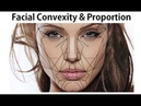 Facial Proportions, Hard Tissue Cephalometric Landmarks in Orthodontic Diagnosis by Dr Mike Mew