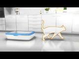 10 способов снять стресс у кошки - рацион Hills - 5 способ