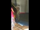 Юная гимнастка Ангелина - два года группа Родители с детьми .