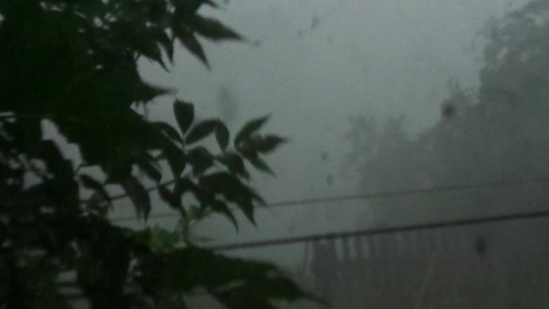 Ураган в Тимофеевском . 24.06.2018