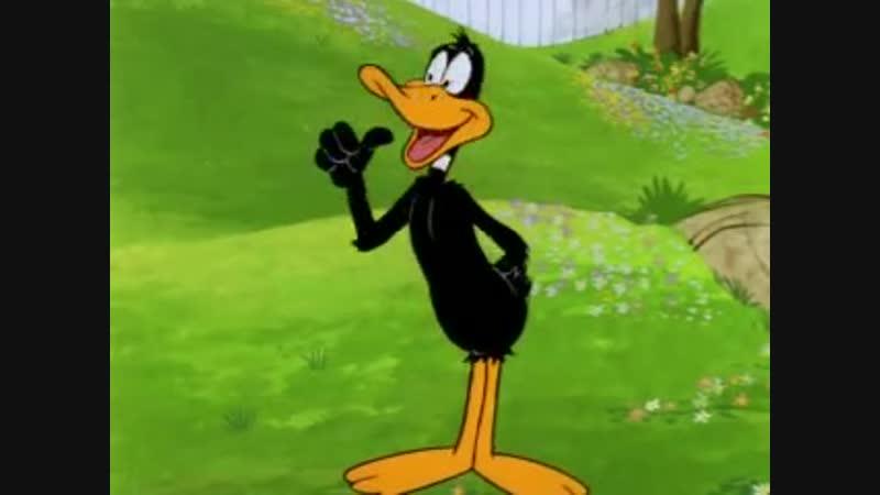 Daffy Duck's Easter Eggcitement April 1 1980