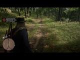 Red Dead Redemption 2Прохождение №31