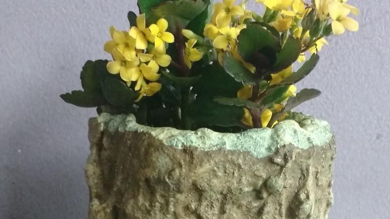 Vaso de cimento em formato de tronco Reciclagem