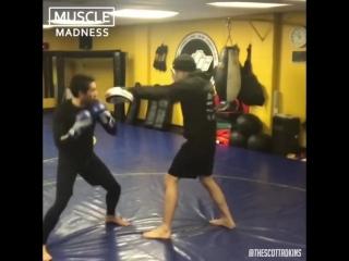 Тренировка Бойка