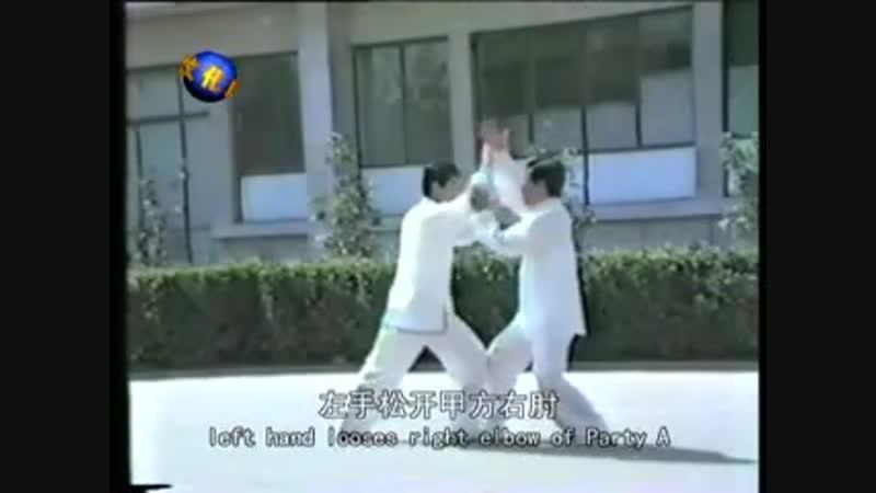 Chen style Taiji Tuishou Chen Zhenglei Chen Xiaowang