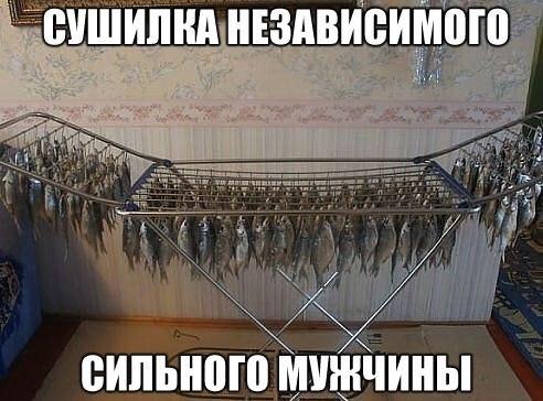 http://cs7061.vk.me/c7007/v7007723/382e6/jZzyVFx_GJY.jpg