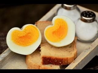 Польза от куриных яиц