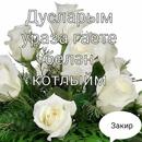 Закир Фаттахов-Мухаметов фото #22