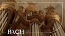 Bach Ich ruf zu dir Herr Jesu Christ BWV 639 Netherlands Bach Society