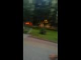 Антон Моргунов - Live