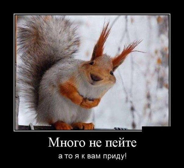 """Целью Майдана было навредить России и """"русским людям"""", - Лавров - Цензор.НЕТ 3663"""
