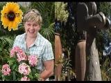 Как украсить свой сад? Делаем статуи своими руками. Секреты садовода. Дача ТВ