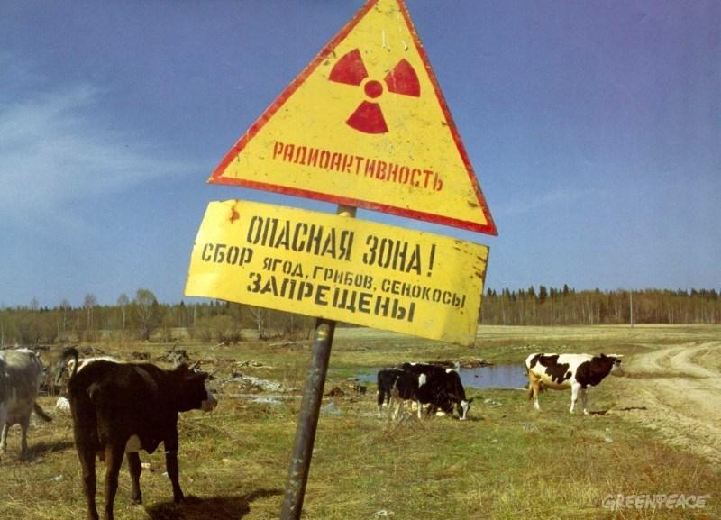 Экологи потребовали раскрыть информацию о радиоактивных отходах в Томской области