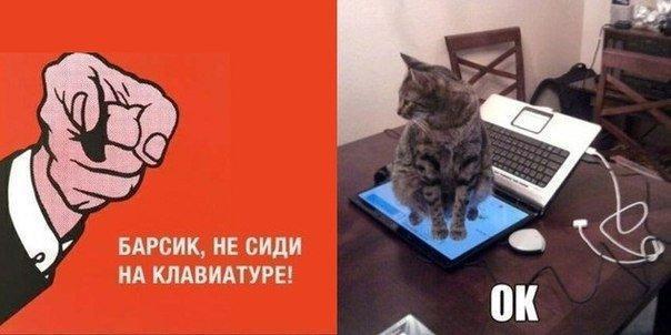 Фото №456248261 со страницы Михаила Лунёва