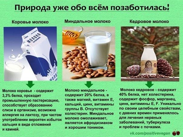 кунжутное молоко рецепт приготовления сыроедная