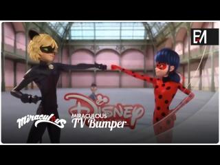 ミラキュラス レディバグ & シャノワール (TV Bumper #2)
