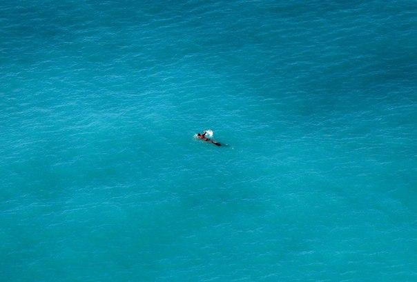 Мужчина плавает в Средиземном море у побережья Ниццы, Франция.