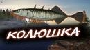 Русская Рыбалка 4 ● РОЗЫГРЫШ ● ЗАКРОЙ ТРОФ КОЛЮШКУ