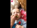 Первый раз попробовал зеленое яблочко