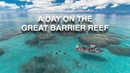 A DAY ON THE GREAT BARRIER REEF | Crystal Clear Waters Meets A Drone!