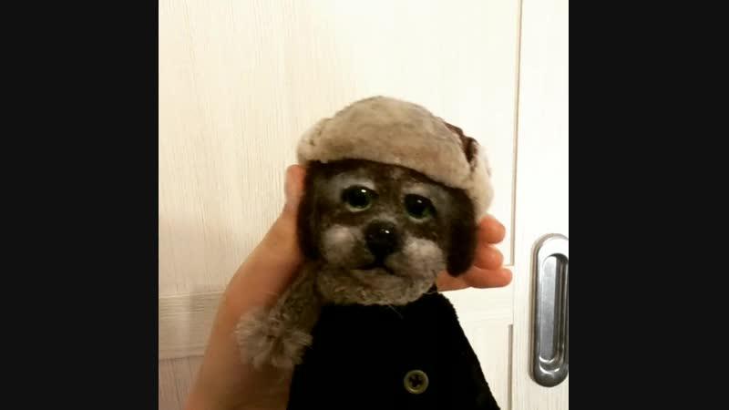 пёс из шерсти