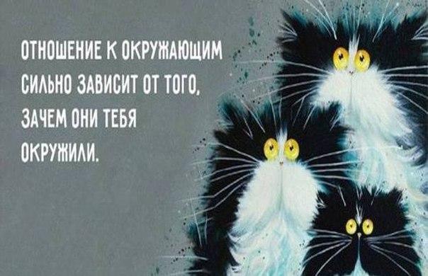Фото №456254388 со страницы Тани Рыженковой